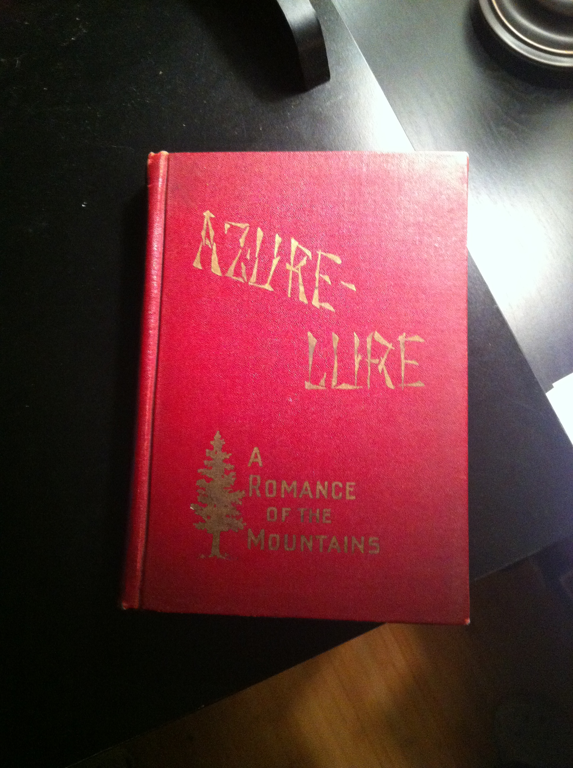 Last Year I Picked Up A Book Called Azure Lure From The Captains Bookshelf Right Across Grove Arcade In Downtown Asheville Theyre Very